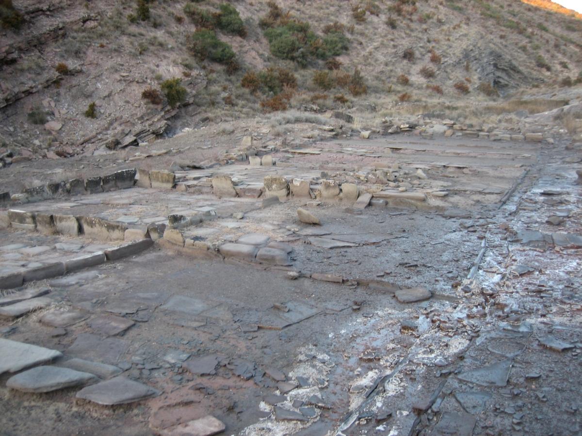 Las salinas Romanas
