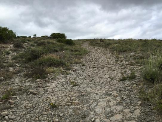 Camino de Santiago po el cerro de Ciriaco