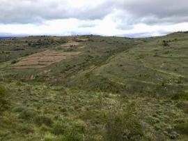 Vista de las Planas y la Buitrera