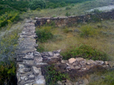 verano2009-183