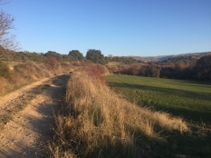 Camino del Arco