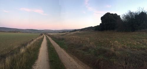 Camino por el vallecico de Lerda.