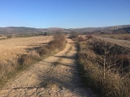 Camino de Santigo hacia Undués