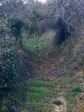 Camino de acceso a la huerta de Villavetre