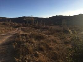 Imagen de la zona de los huertos
