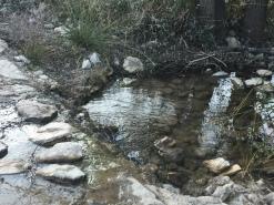 Paso del Barranco