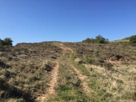 Camino de ascenso a la cima