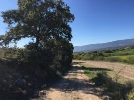 Camino hacia Las Nogueras