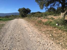 Zona de la Torreta. Frontera con la comunidad de Navarra