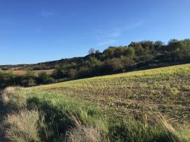 Cerro de Lerda