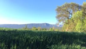 Imágen desde el Colaso de la Sierra de Leyre