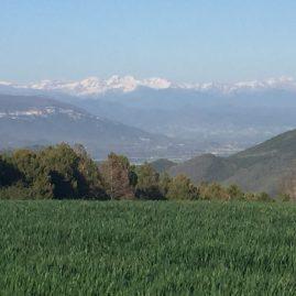 Vista de los Pirineos desde la Cañada