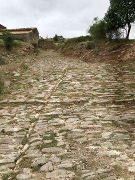 Calzada romana al fondo el corral de Arbea