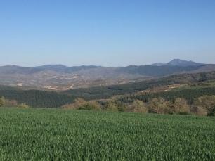 Valle de Pintano