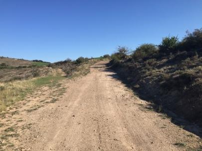 Ascenso a la zona del cerro de Respún