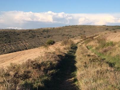 Camino hacia Santo Tornil