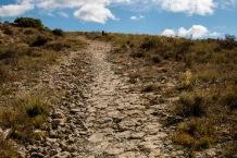 Camino de Santiago a su paso por el cerro de Ciriaco