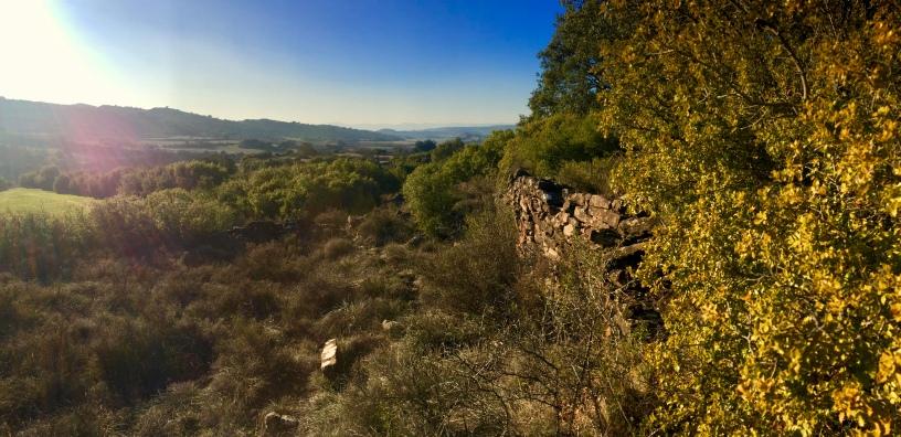 Restos de la ermita de Santa María