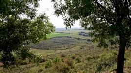 Vista de Bala