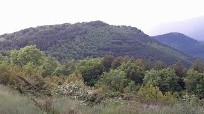 Vista del Montico