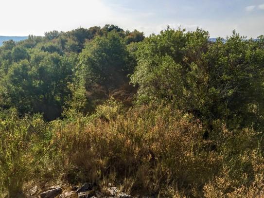 El cerro de Lerda