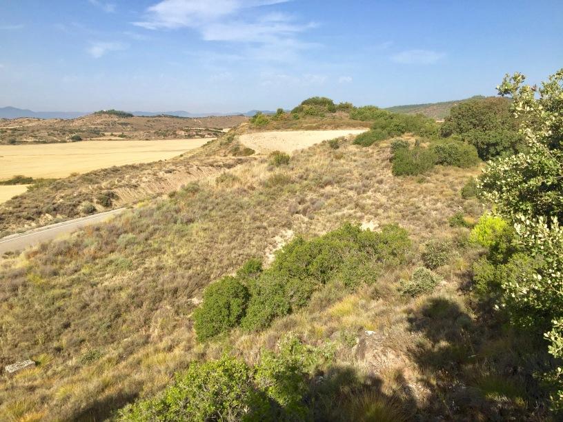 Vista desde el cerro de Lerda