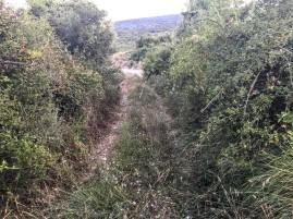 Camino pasado el correr de la Loma hacia el Río Monte