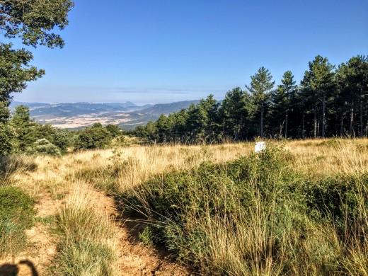 Descenso por el cortafuegos del Monte de Santa Cruz.