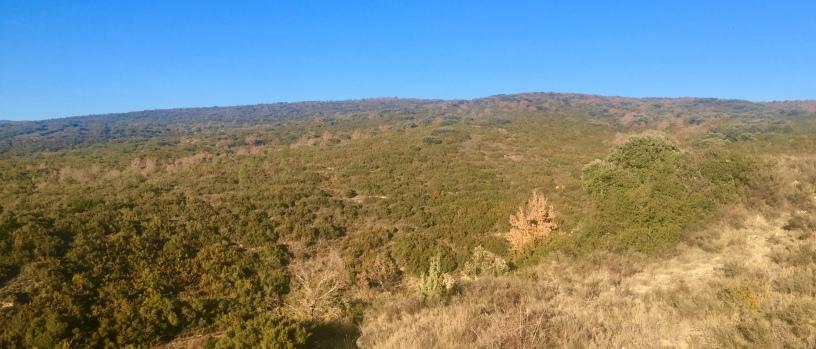 Vista del monte de Santa Cruz desde la barrera de la Tresa