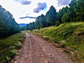 Vista desde el camino